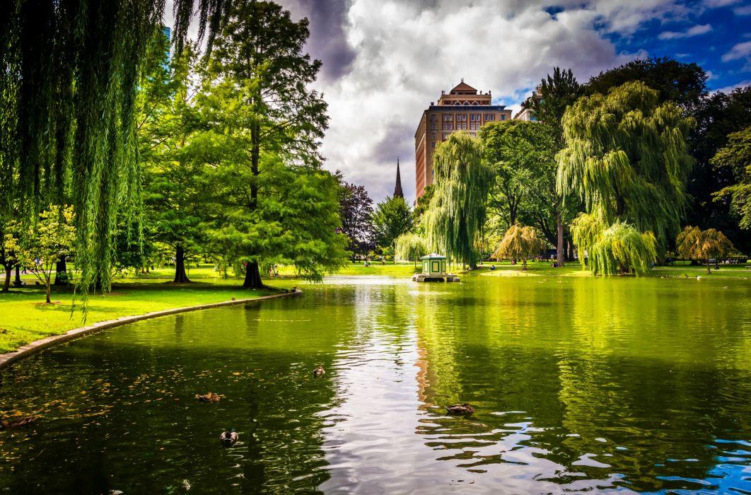 park houses trees grass green pond ducks wallpaper