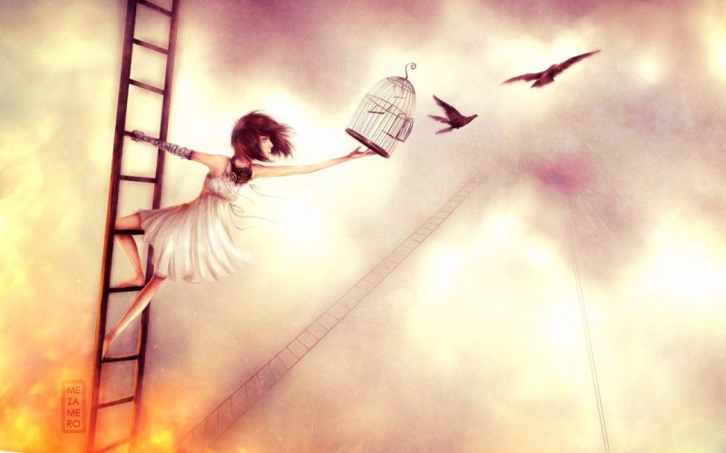 anime art awesome birds cage freedom girl ladder wallpaper