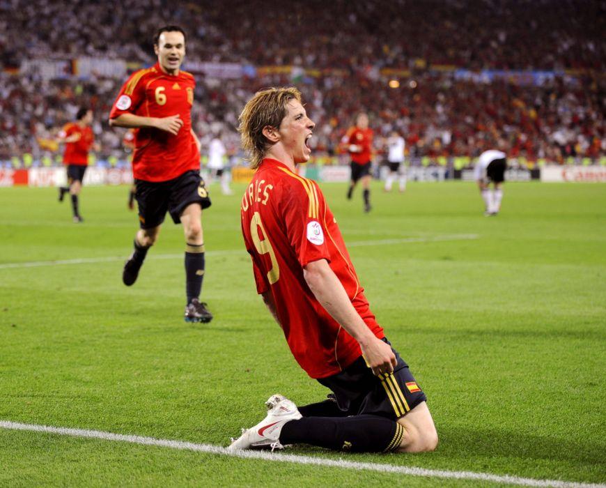 fernando torres celebra gol de a-final-de-la-eurocopa-2008 wallpaper