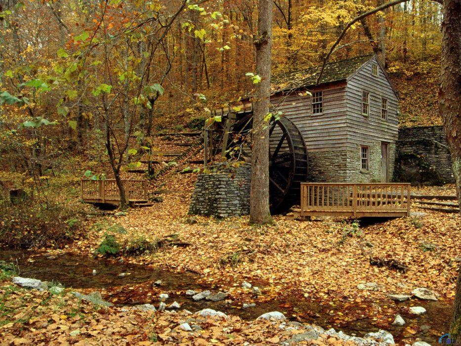 nature forest house autumn amazing beauty river landscape wallpaper
