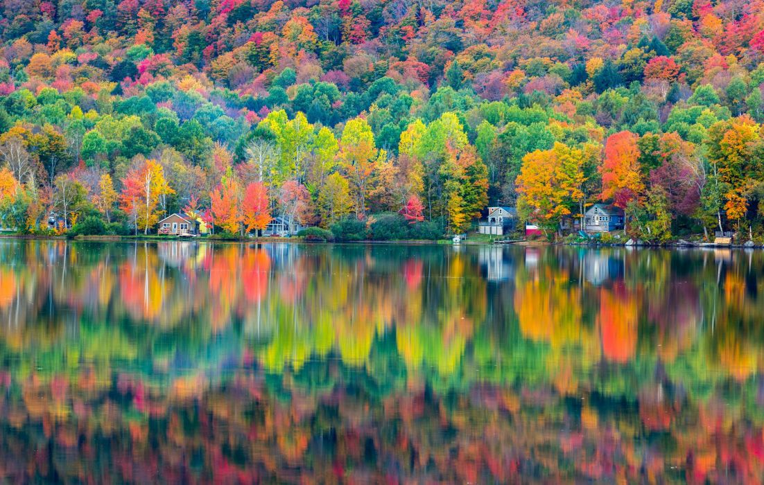 nature autumn beauty color forest lake Landscapes life season shadow trees water wallpaper
