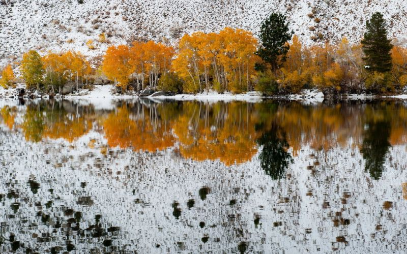 nature Bishop colors Creek Canyon early fall forest lake mountains reflected Sabrina trees winter wallpaper