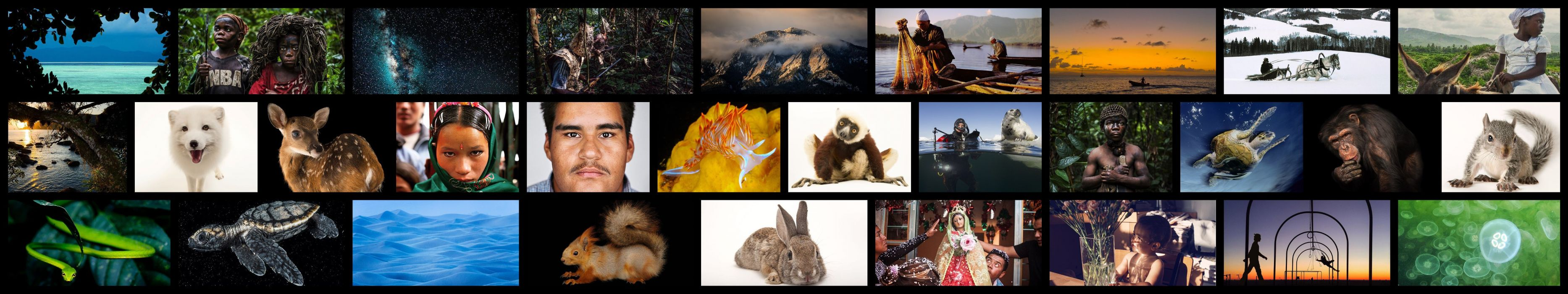 national geographic wallpaper