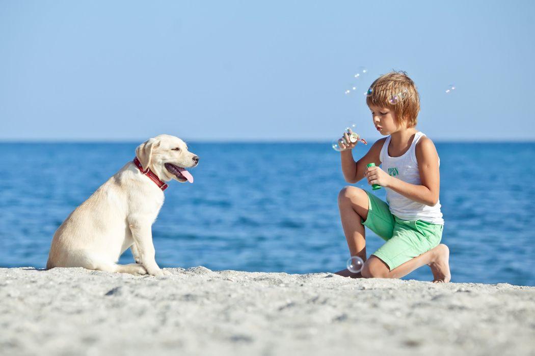Dog Boy Retriever Beach Children Animals wallpaper