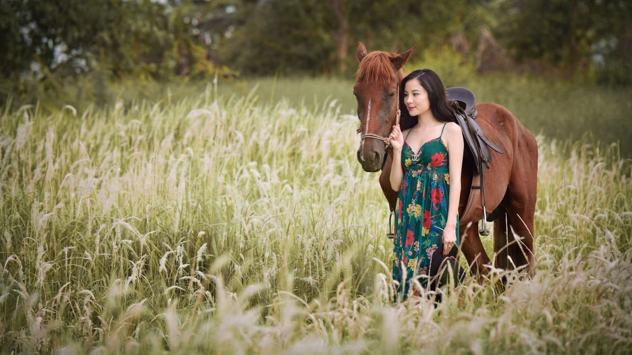 Horse Asian Grass Animals Girls wallpaper