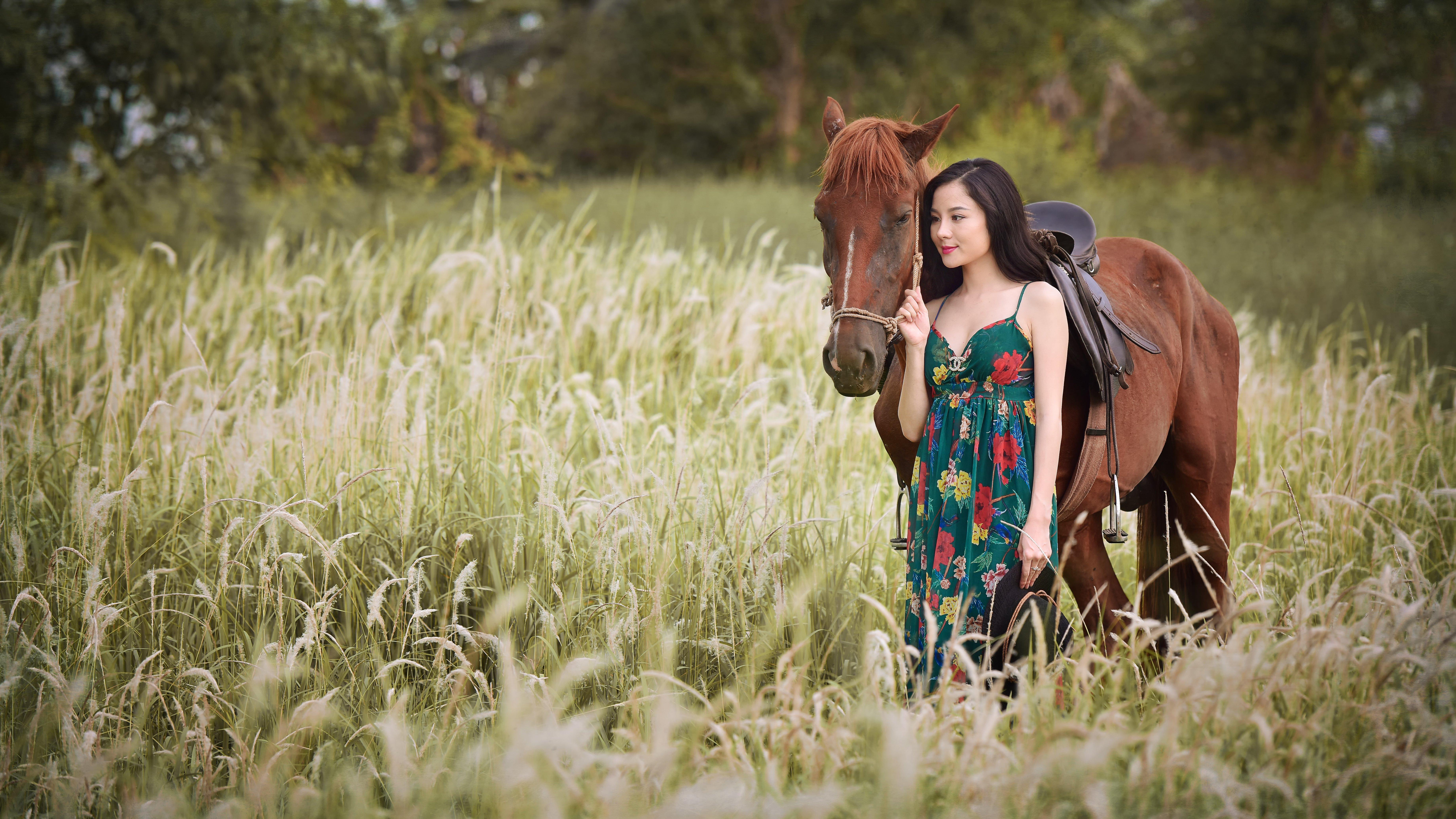 Download Wallpapers Download 2790x2547 Animals Grass: Horse Asian Grass Animals Girls Wallpaper