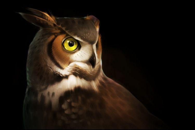Owls Painting Art Black background Animals wallpaper