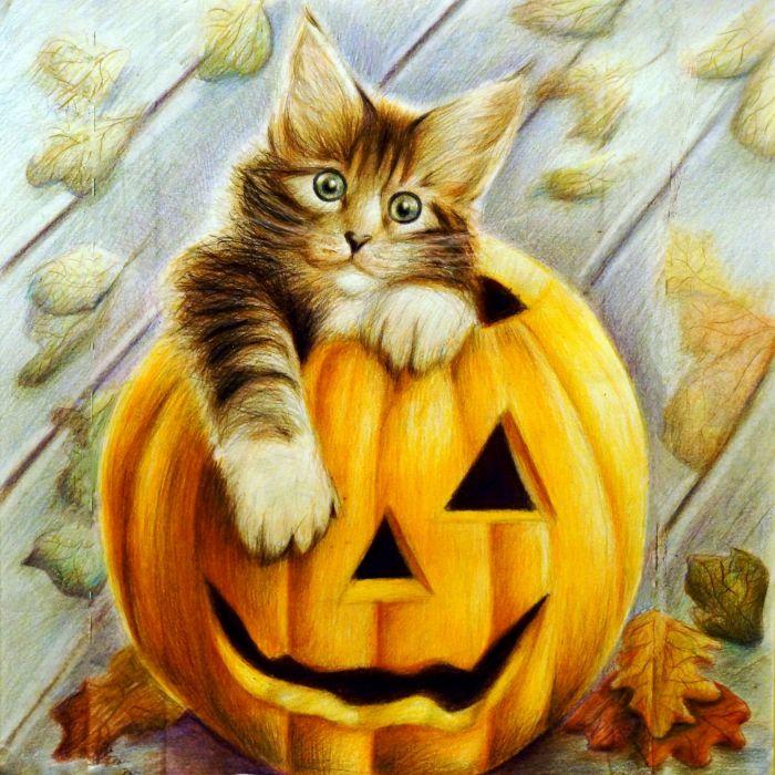 Cats Painting Art Halloween Pumpkin Animals wallpapers wallpaper