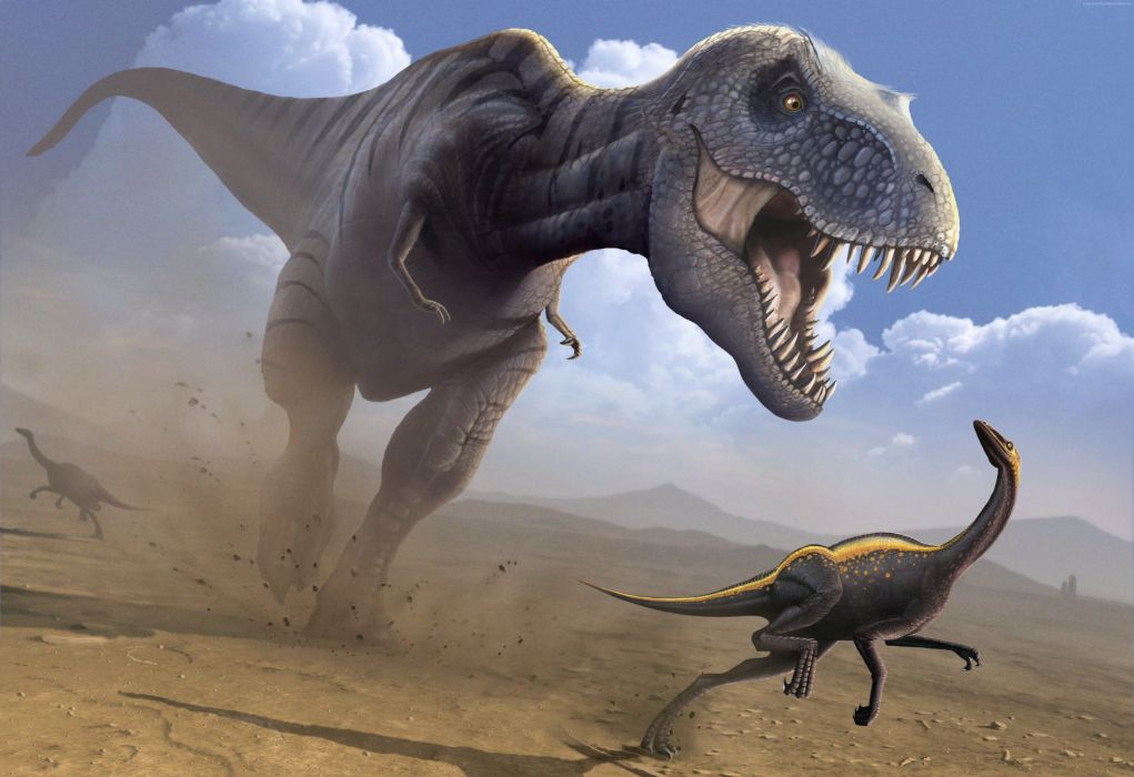 Dinosaurs Ancient animals Tyrannosaurus Rex Animals wallpapers wallpaper