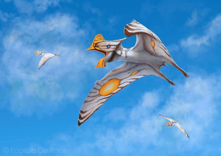 Ancient animals Dinosaurs Sky Flight Tapejara Animals wallpapers wallpaper