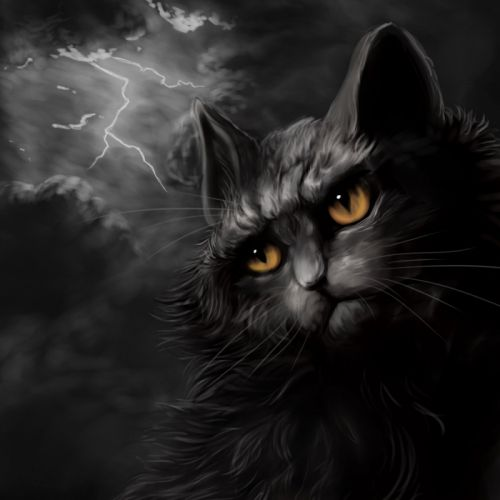 Cats Painting Art Night Lightning Animals wallpapers wallpaper