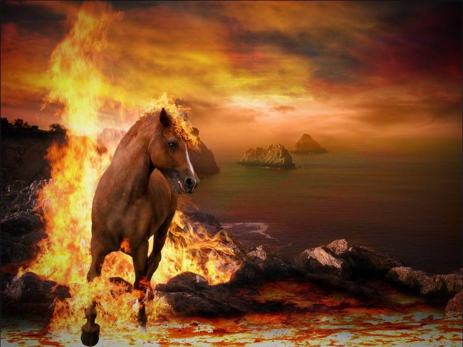 Horses Fire Animals wallpapers wallpaper