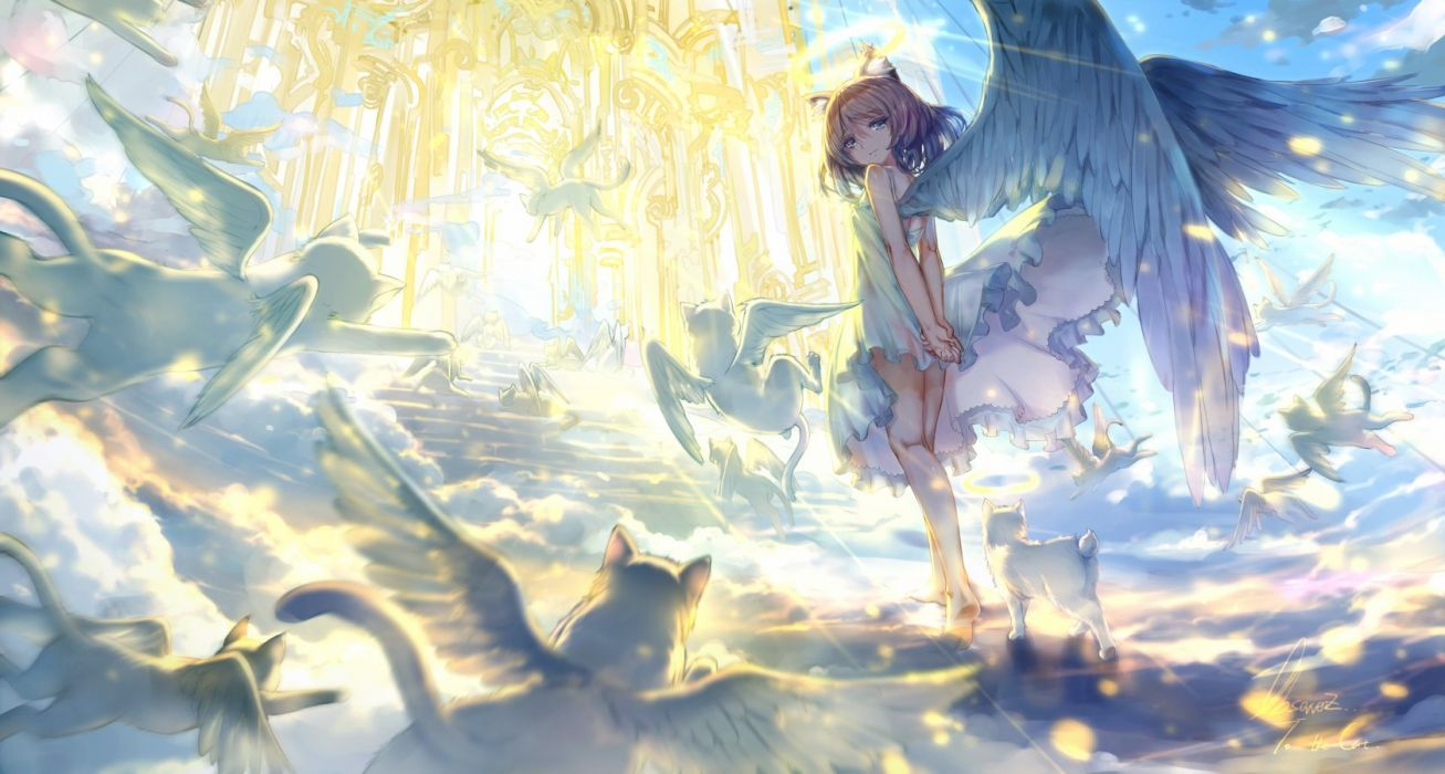 angel animal animal ears brown hair cat catgirl clouds dress gray eyes halo observerz original short hair signed summer dress tail wings wallpaper