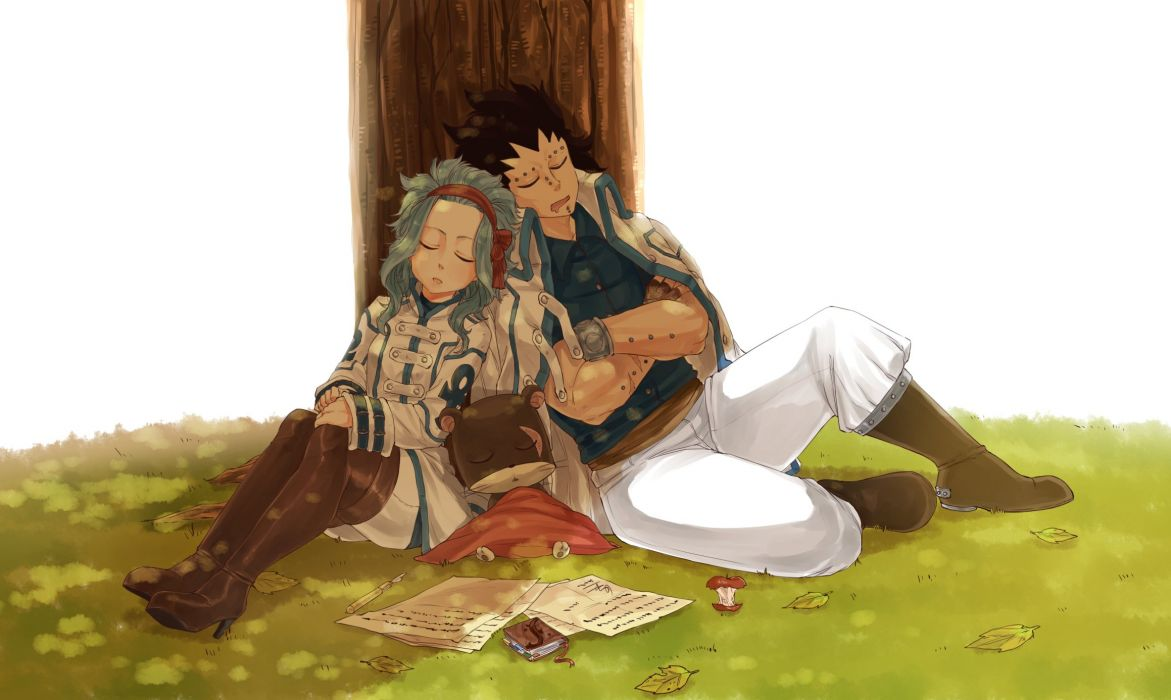 Blanania FAIRY TAIL Gajeel Redfox Levy McGarden Pantherlily Crossed Arms wallpaper