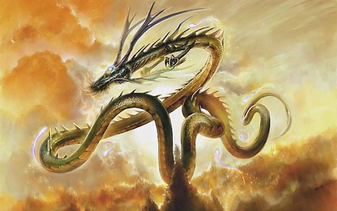 fantasia dragon chino wallpaper