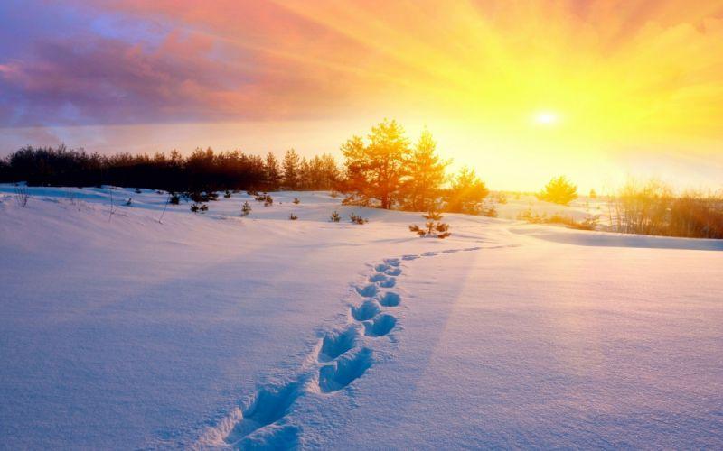 Winter Footprints nature beauty wallpaper