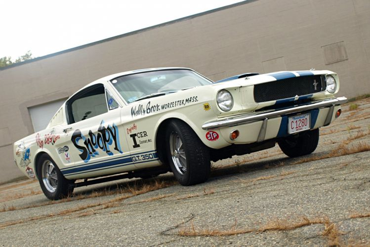 1965 Shelby GT350 Snoopy cars ford mustang wallpaper