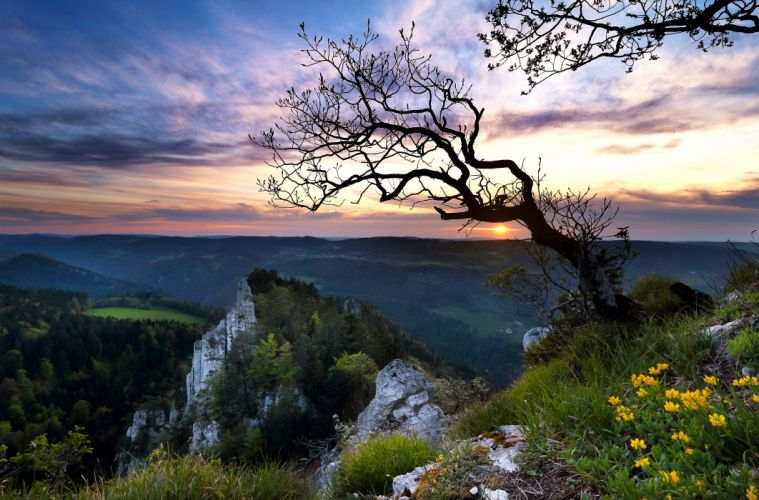 Switzerland sunset mountains rocks tree wallpaper
