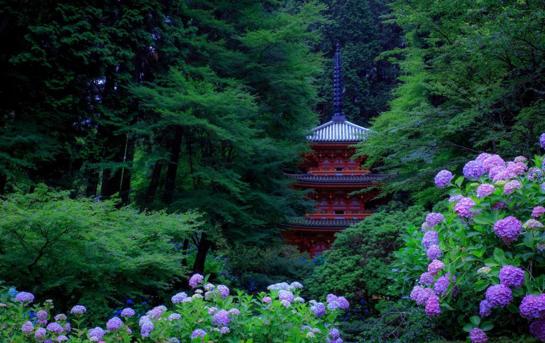 Japan Gardens Hydrangea Pagodas Trees Kyoto Nature wallpapers wallpaper