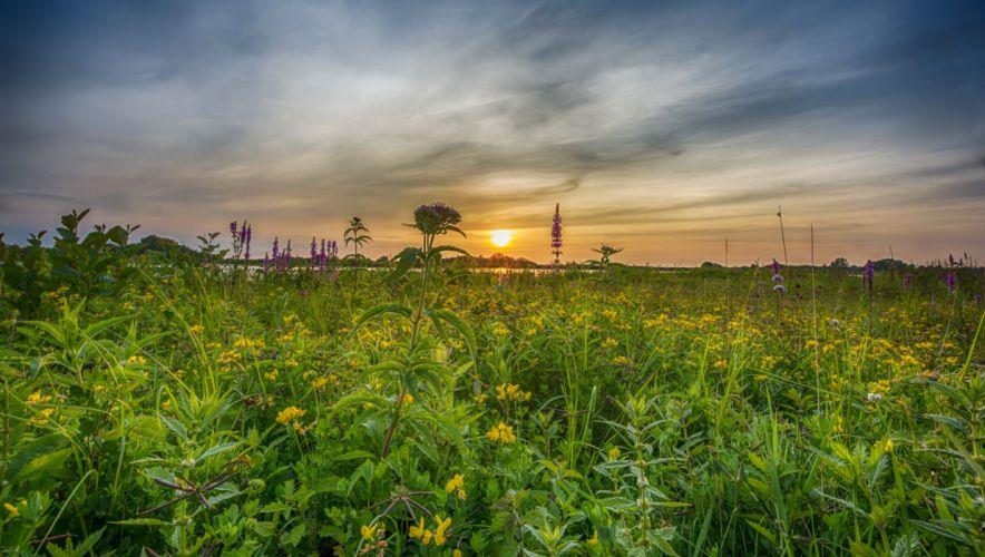 Sunrises and sunsets Sky Grasslands Sun Nature wallpapers wallpaper