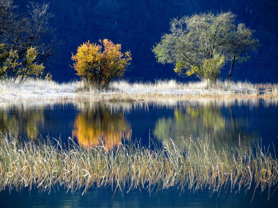 lake trees autumn wallpaper