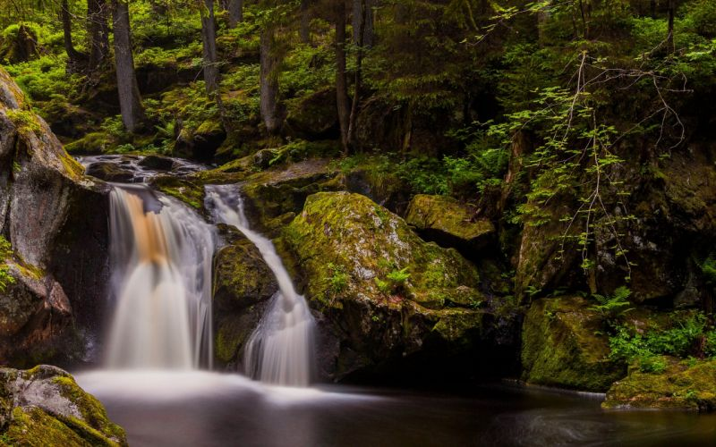 Waterfall Rock Stone Forest River Stream Green Trees Nature wallpaper