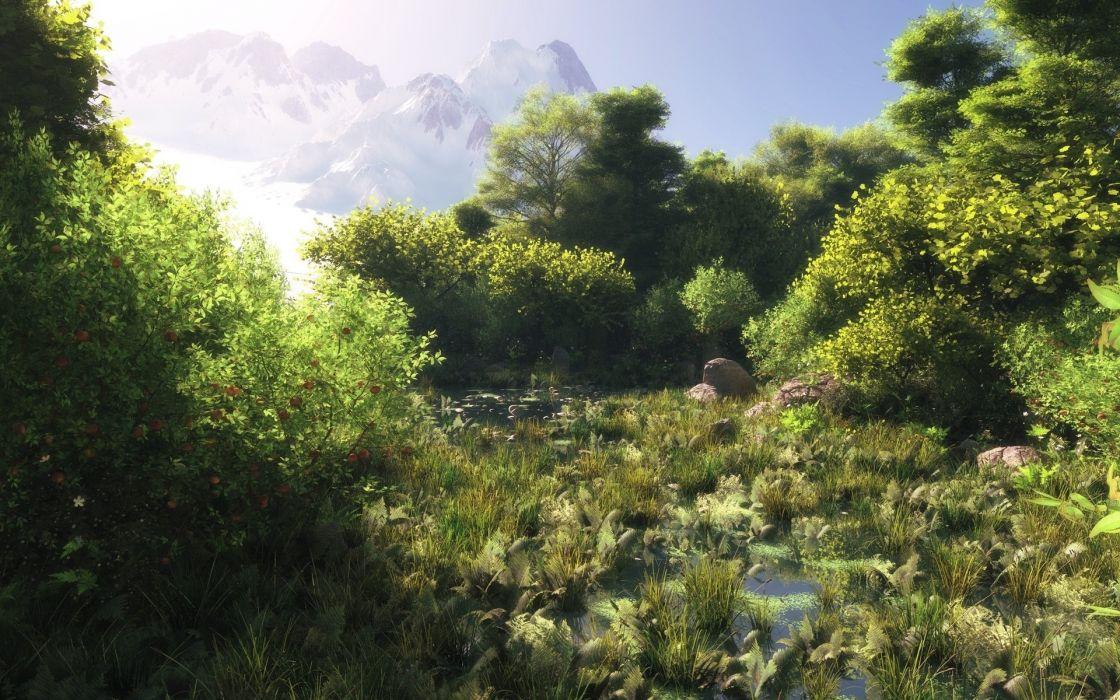 art forest mountains water grass green swamp wallpaper