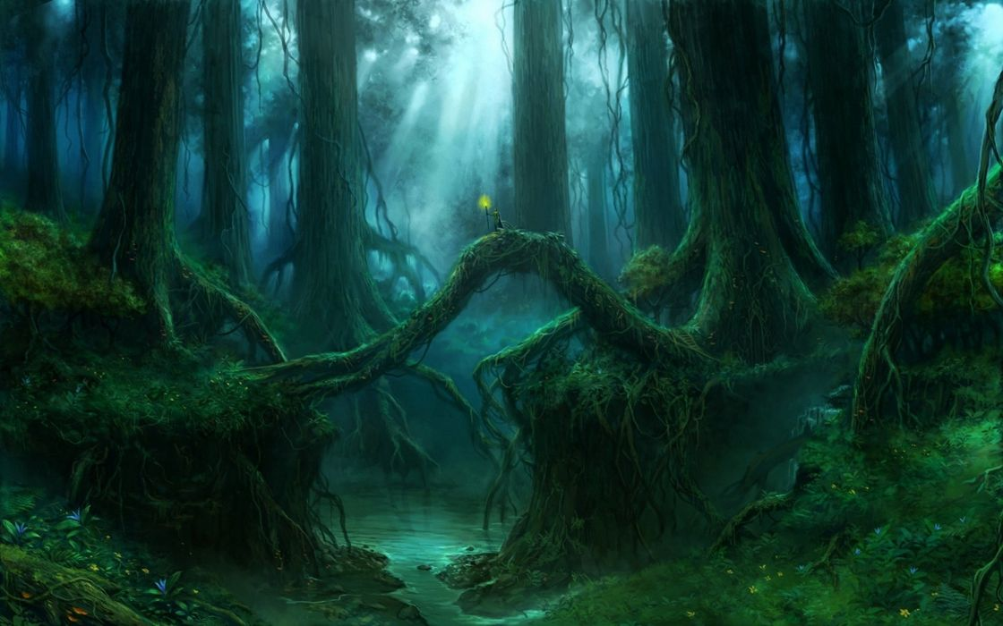 Creek Forest Art Roots Giant Thicket Trees Wallpaper