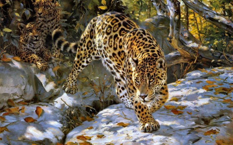 donald grant jaguar art autumn wallpaper