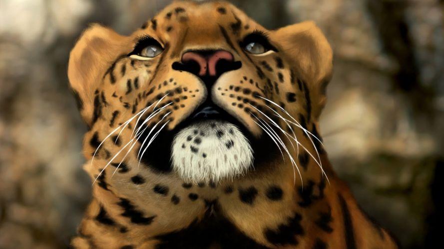 head face leopard art cat wild predator wallpaper