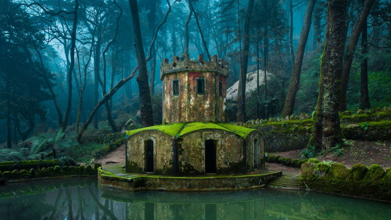 reflection tower lake water forest architecture nature wallpaper