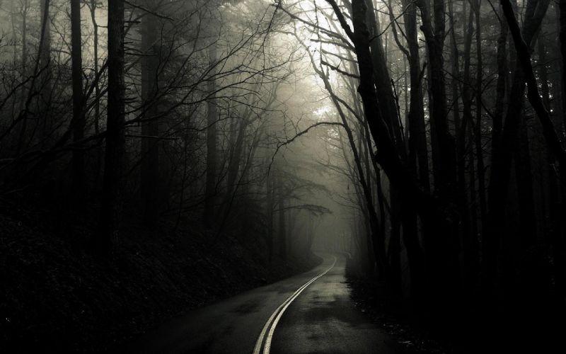 3840x2400-road dark mist-8731 wallpaper