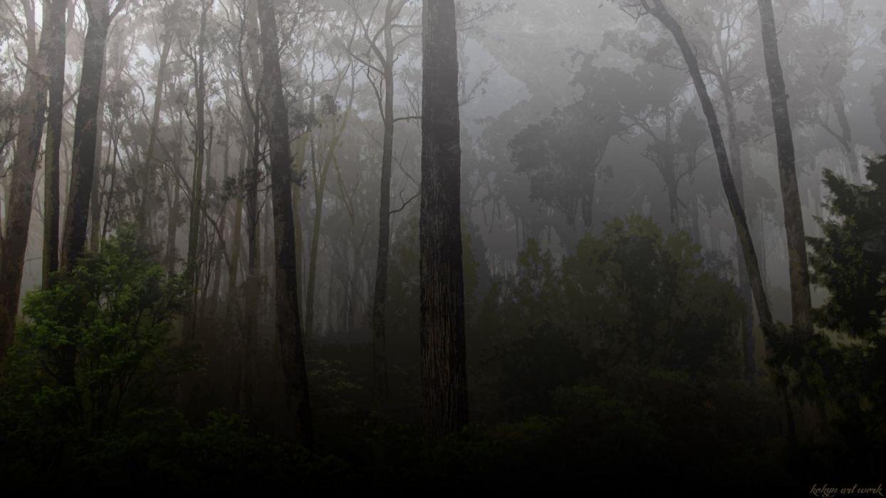 Forests-Dark-Forest-251625 wallpaper