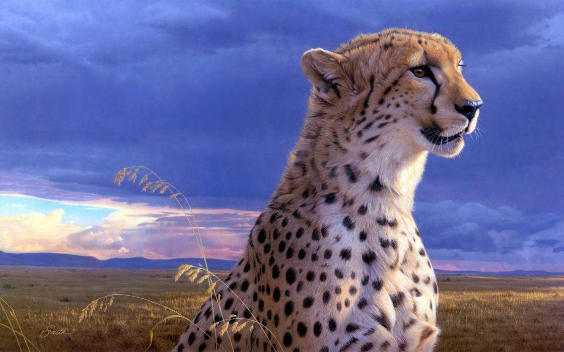 painting animal beauty cheetah art daniel smith wallpaper