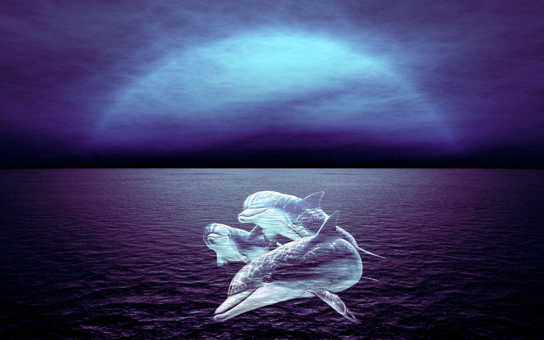сны о море картинки фото представлены