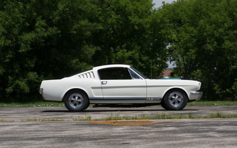 1965 ford mustang Shelby GT350 cars classic white Fastback wallpaper
