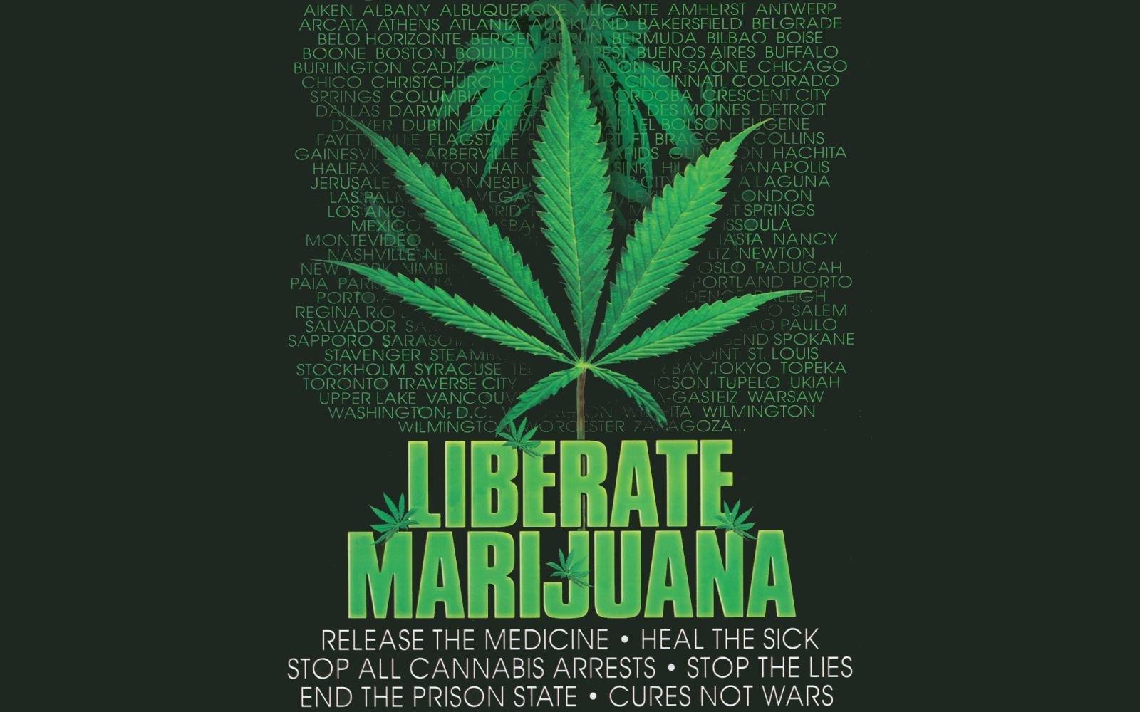 marijuana essays