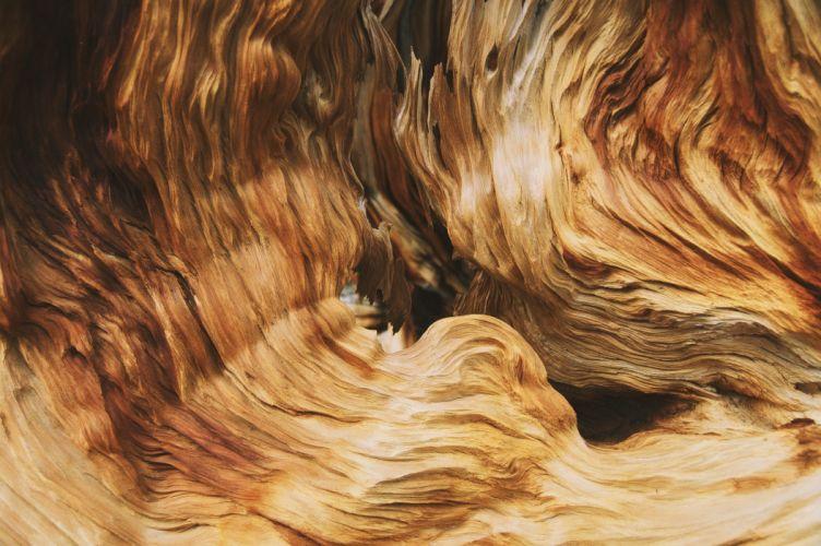 abstracto textura wallpaper