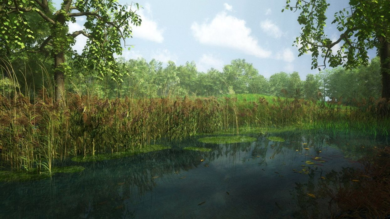 clouds river leaves forest trees sky wallpaper
