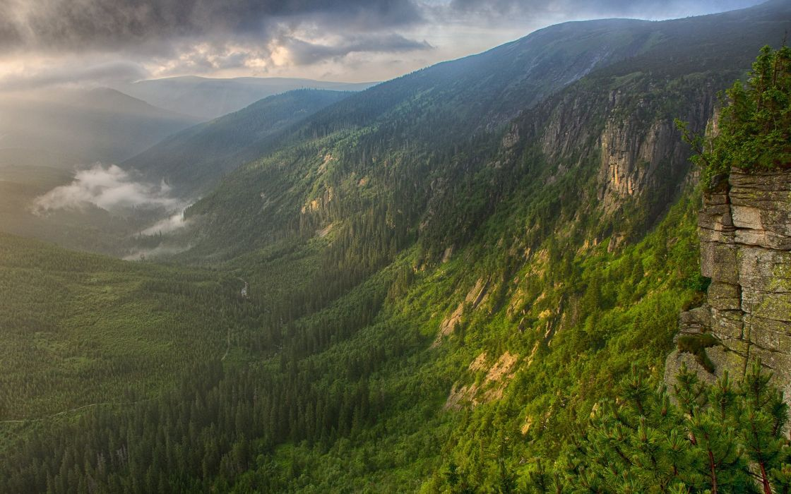 mountains fog valley forest river morning wallpaper
