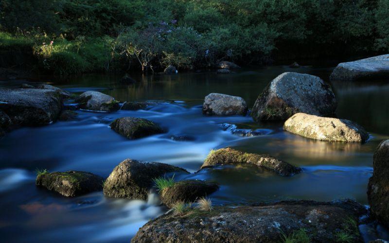grass river stream rocks wallpaper