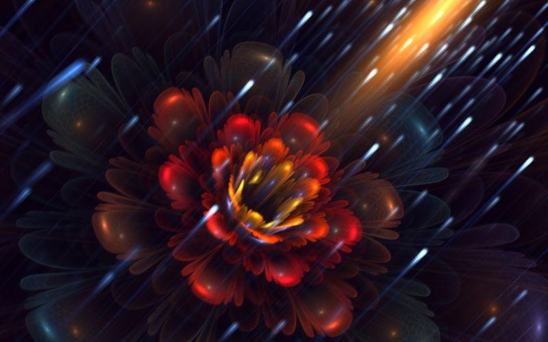 art fractal flower fireflies petals wallpaper