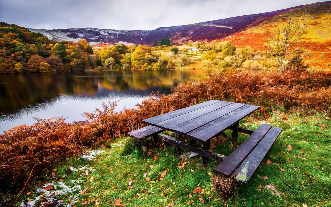 trees autumn benches beach landscape table river wallpaper