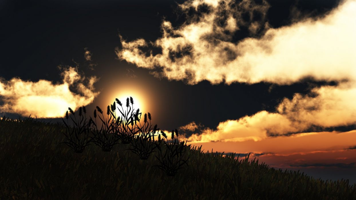 art sunset nature silhouettes hill clouds grass sun wallpaper
