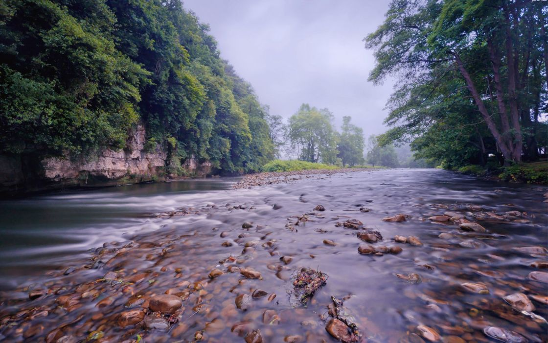 for trees river shallow timber stones small river wallpaper