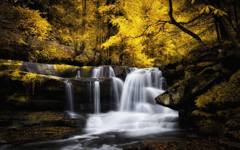 waterfall autumn cascade forest river stream wallpaper