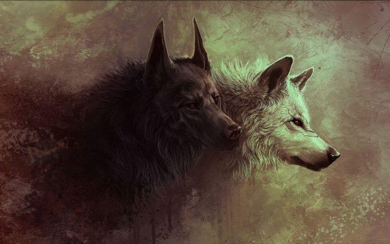 beasts wolf art wallpaper
