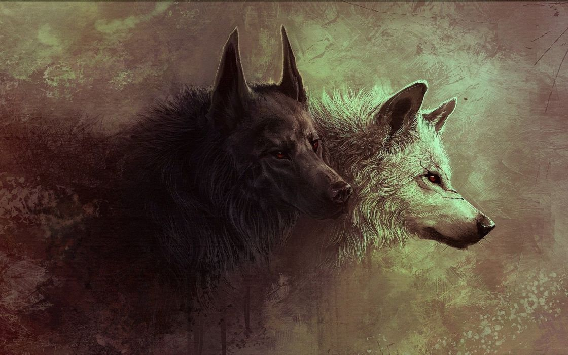 beasts wolf art wallpaper