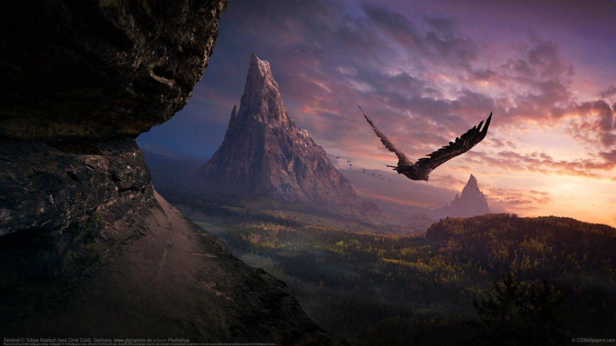 beauty mountain bird landscape tobias roetsch wallpaper