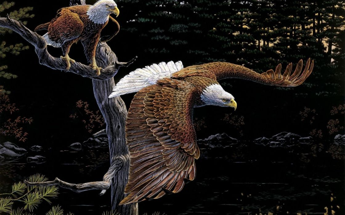birds eagles art al agnew tree forest wallpaper